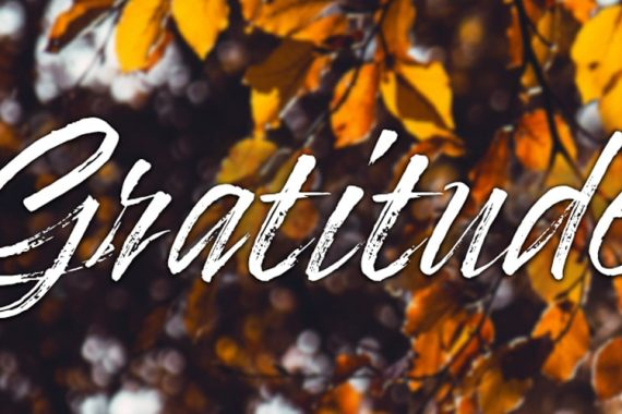 Cultivating-Gratitude-Blog-header